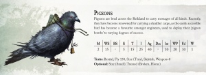 WH4_Pigeons