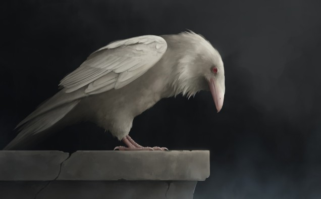 magdalena-swiderska-white-raven-magdalena-swiderska.jpg